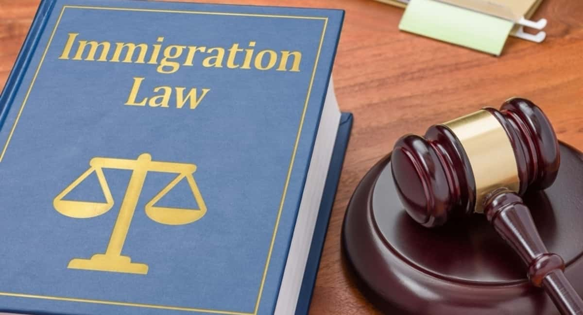 What You Need to Know About Immigration Law