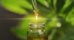 8 Things You Should Know About the Legality of Hemp-Derived CBD Oil