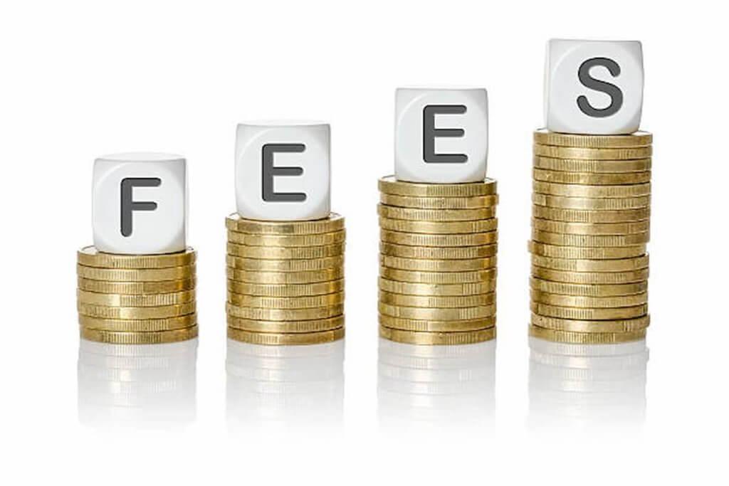 Consultation fees