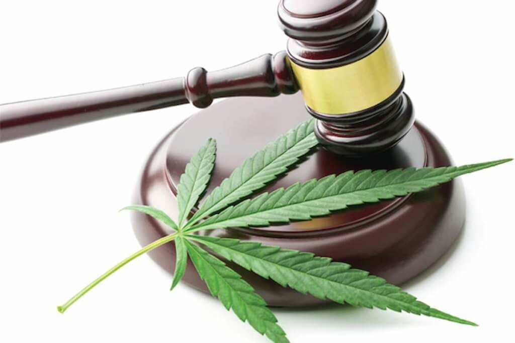 Cannabis and workers' compensation