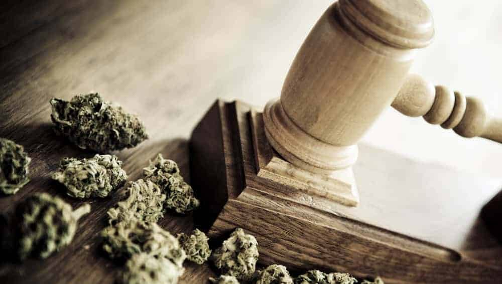 The History of Marijuana Legalization in California