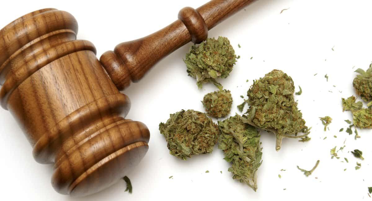 how do court ordered drug tests work
